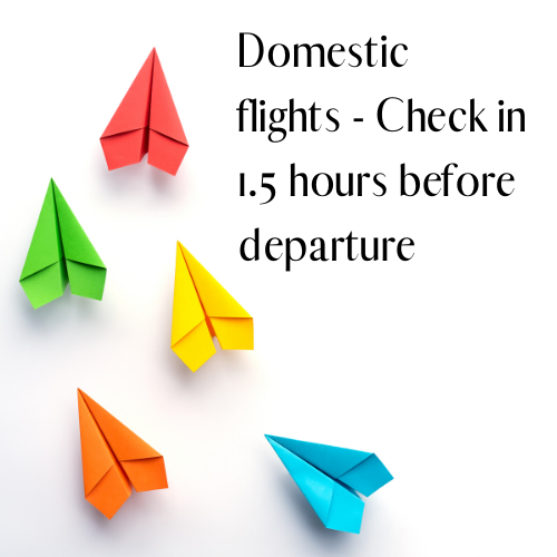 domestic flights
